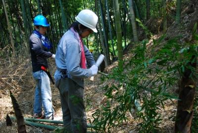 竹材の確保