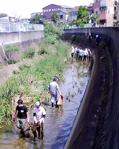 川掃除をしています